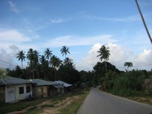 The road to my mom's house in Zanzibar